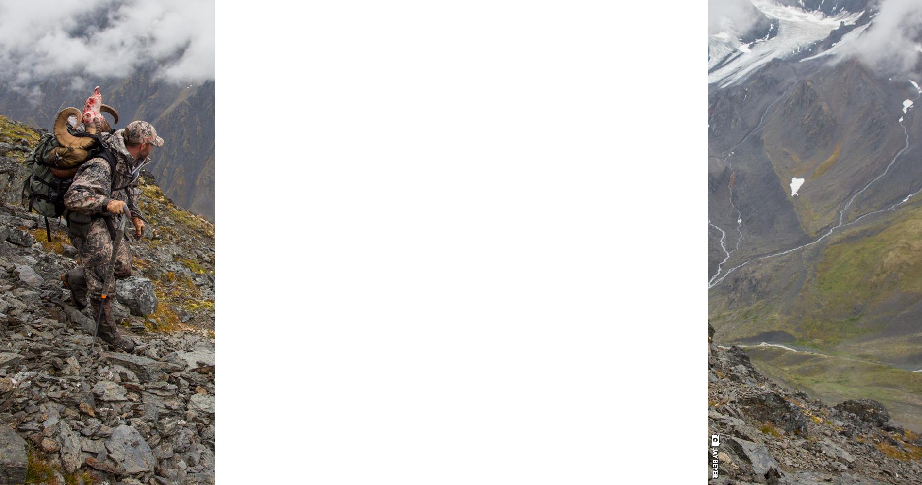 BlackOvis Background Image