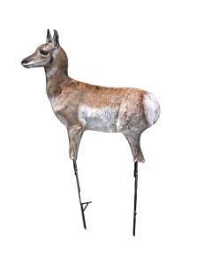 Montana Decoy Antelope Fawn Predator Decoy