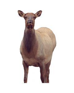 Montana Decoy Eichler Elk Decoy