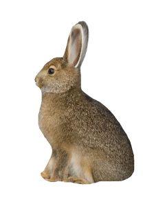 Montana Decoy Miss Hoptober Rabbit Decoy