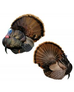 Montana Decoy Mr T Strutter Turkey Decoy