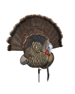 Avian-X Trophy Tom Turkey Decoy and Taxitermy Display 1