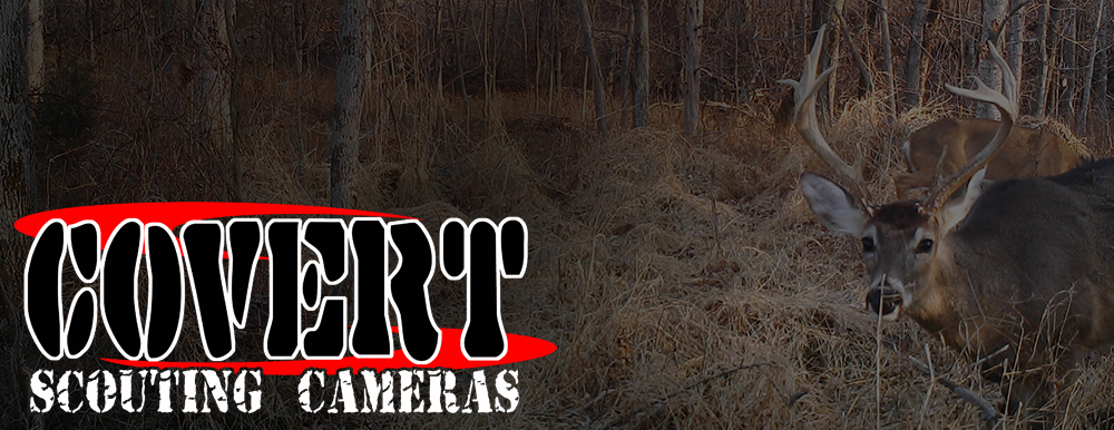 Covert Scouting Digital Trail Cameras