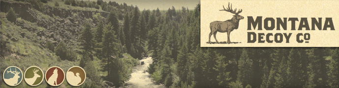 Montana Decoys